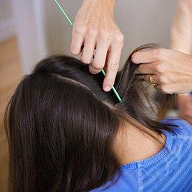 check for head lice